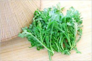 春菊の栄養素